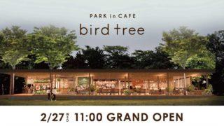 bird tree(バードツリー)|千里南公園内のカフェレストランが最高に素敵すぎた